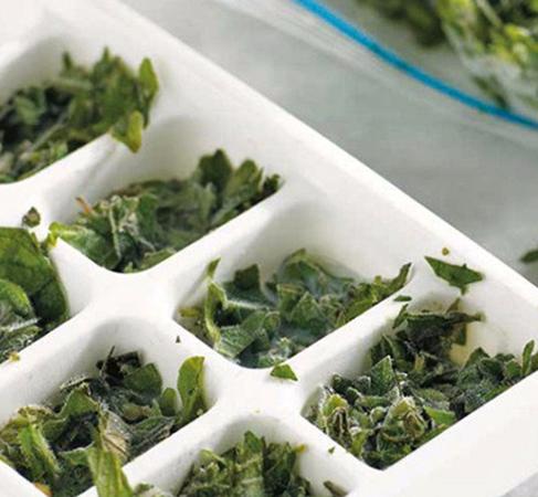 Зеленый лук в формочках для льда
