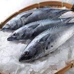 Как правильно хранить замороженную рыбу?