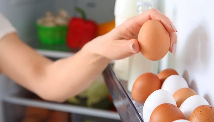Складирование яиц в холодильнике