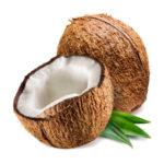 Как хранить кокос — важные особенности