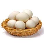 Как правильно хранить гусиные яйца