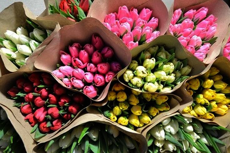 Хранение срезанных тюльпанов сухим способом