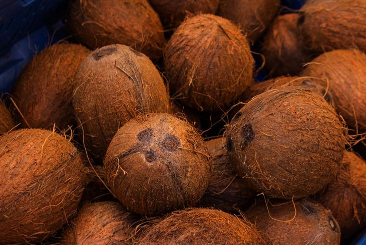 Хранение кокосов