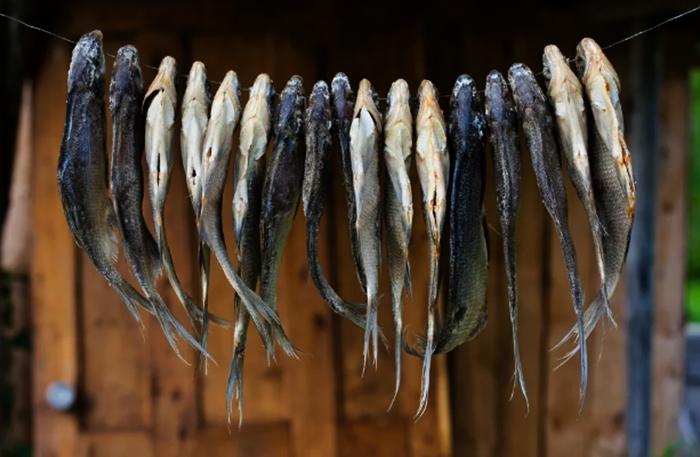 Вяленая рыба на проволоке