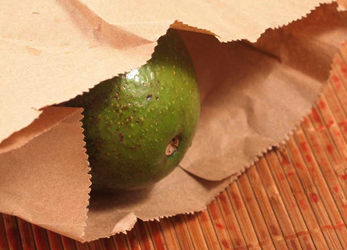 Авокадо в бумажном пакете