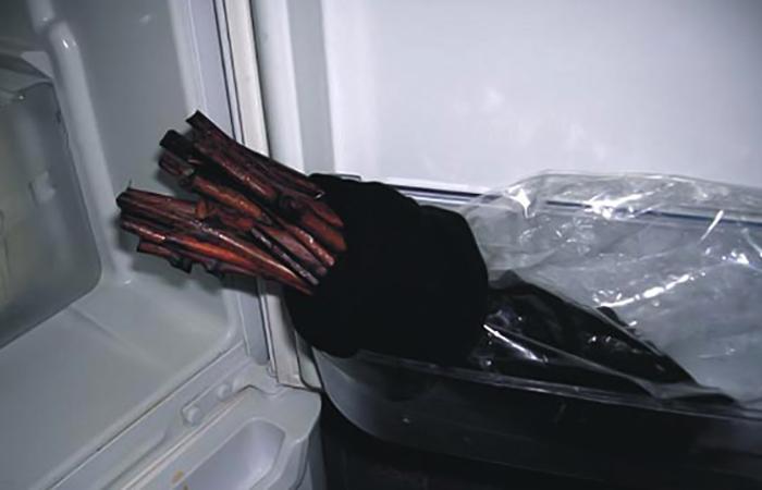 Черенки в холодильнике