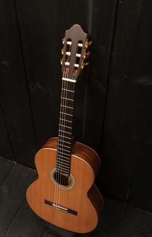 Гитара дома
