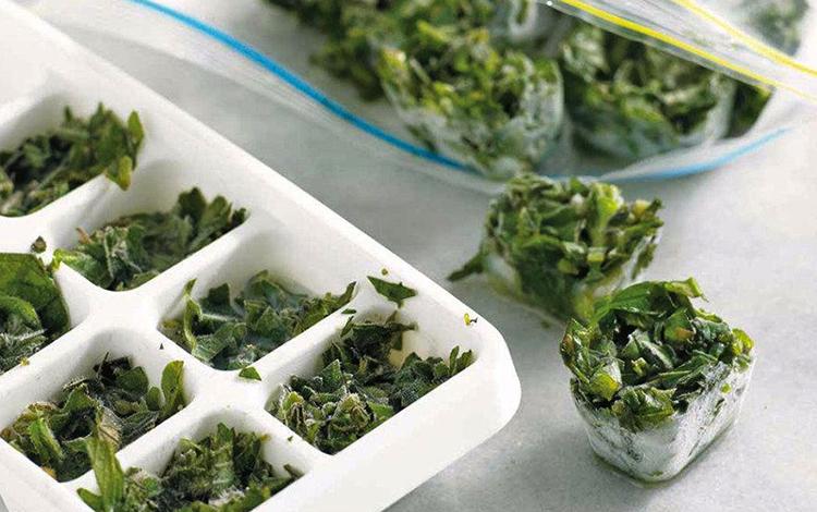 Заморозка зелени в кубиках