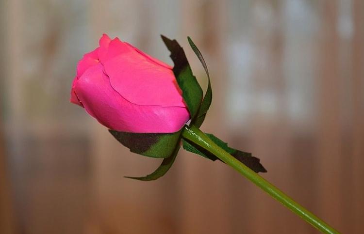 Одна мыльная роза