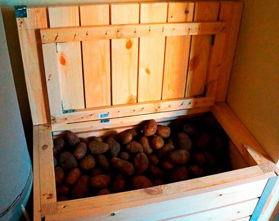 Картофель на балконе в деревянном ящике