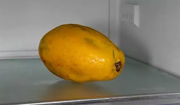 Папайя в холодильнике