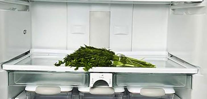 Укроп в холодильнике